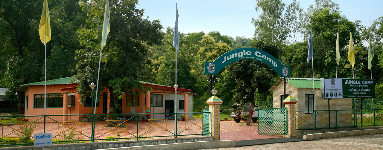 Madla Jungle Camp in Panna