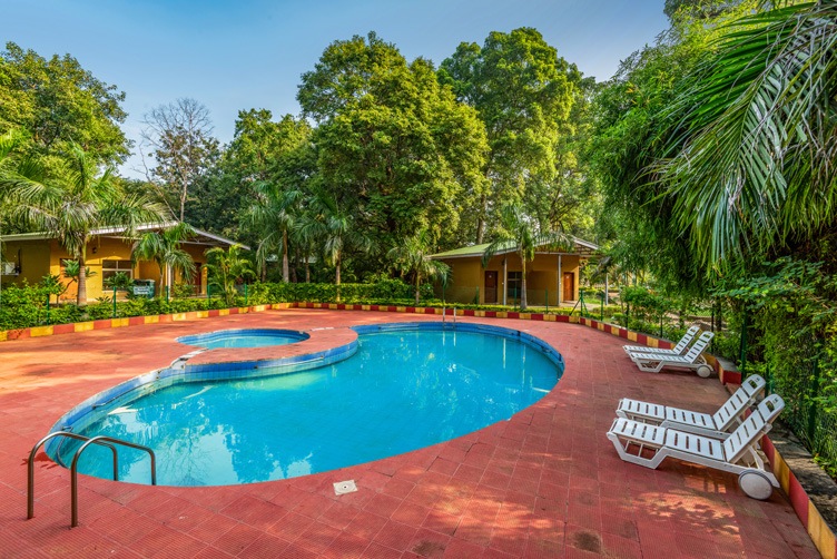 MPT White Tiger Forest Lodge, Bandhavgarh